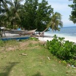 Looc property for sale
